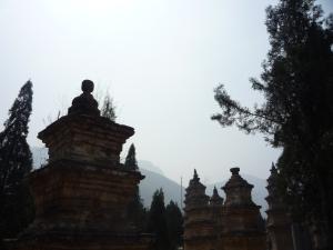 Xi'an and Henan 564