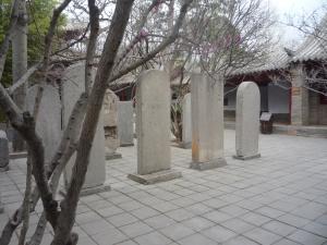 Xi'an and Henan 464