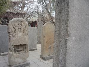 Xi'an and Henan 465