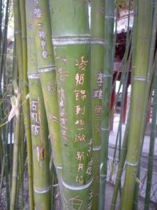 Xi'an and Henan 485