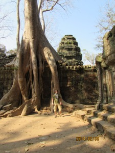 I heard a guy say there are two types of trees in these temples: good ones and bad ones. The good ones help keep the walls intact and the bad ones crumble them...